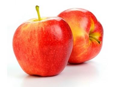 gala-manzana-tipos